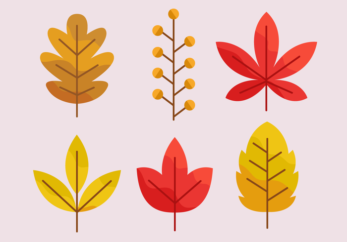Free Autumn Leaves Vector - Download Free Vectors, Clipart