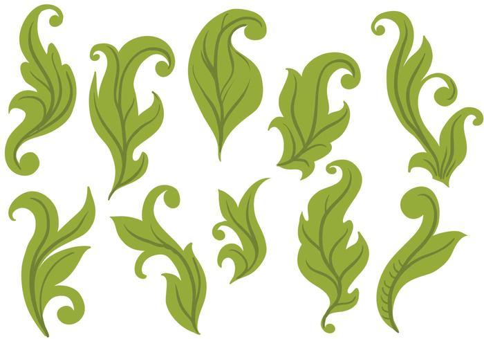 Free Leaves Vectors