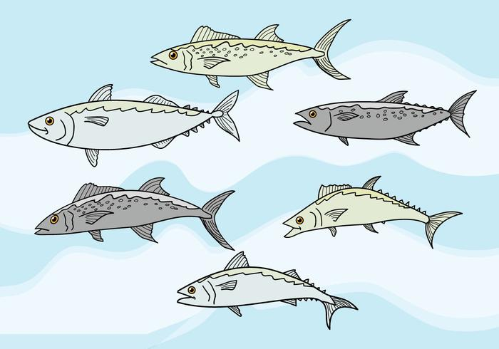 Mackerel Vector