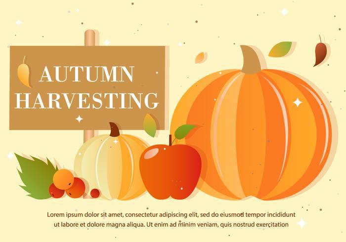 Free Autumn Vector Harvest