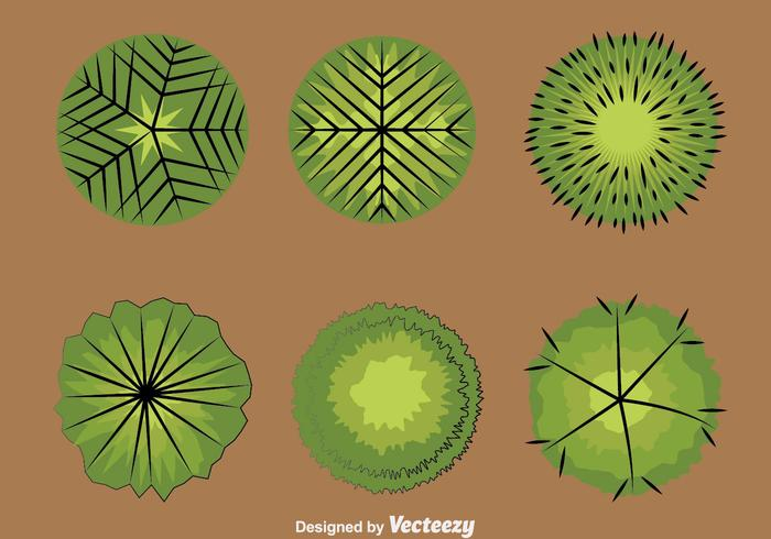 Tree Tops Collection Vector