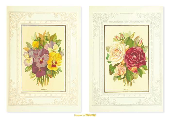 Ilustraciones de la flor del vintage del pensamiento