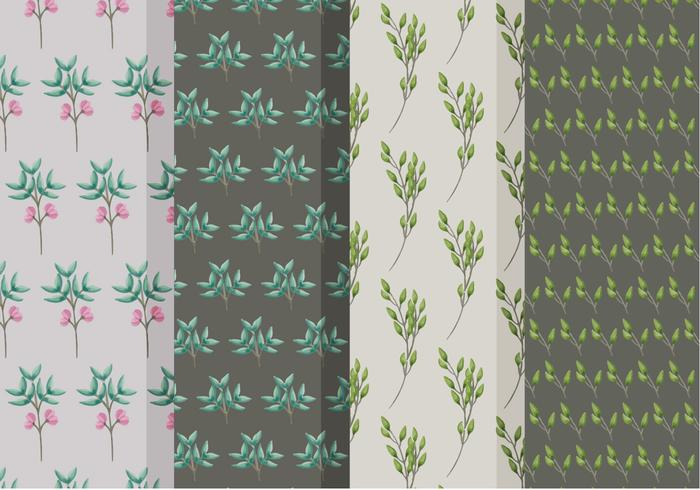 Beautiful Branch Vector Patterns