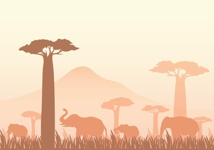 Ilustração vetorial grátis Baobab