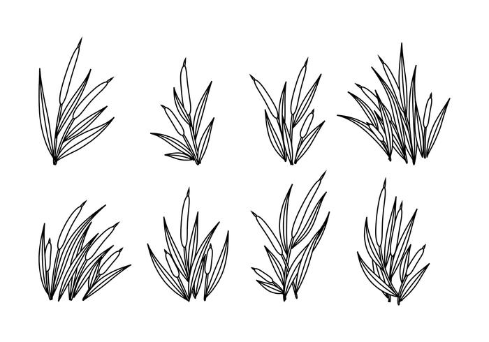 Cattails Vector Outline