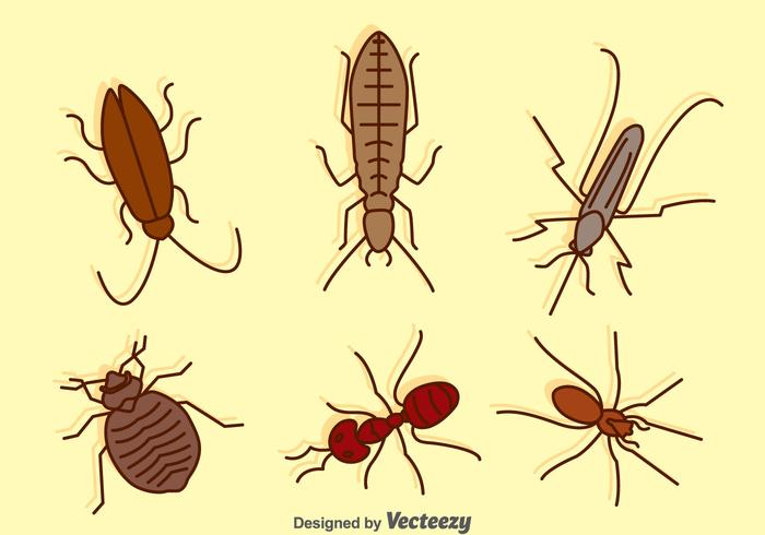 Hand Drawn Pest Collection