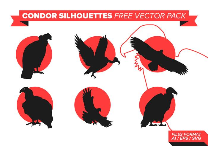 Condor Silhouette Free Vector Pack