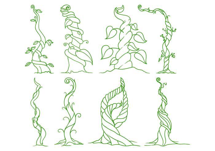 Vecteur libre d'illustration de Beanstalk