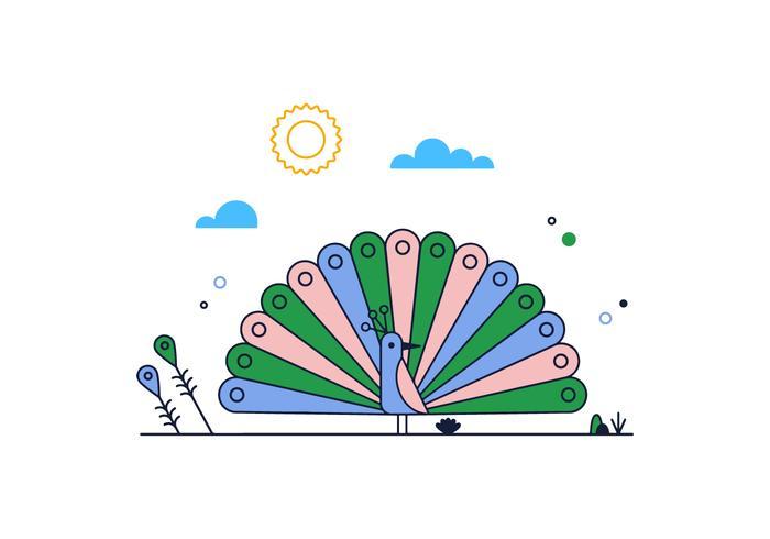 Free Peacock Vector