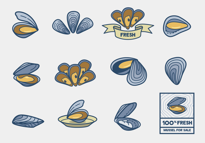 Mussel Vector Pack