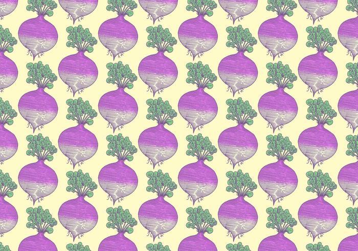 Rutabaga Vegetable Pattern