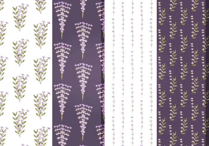 Padrões florais de lavanda vetorial