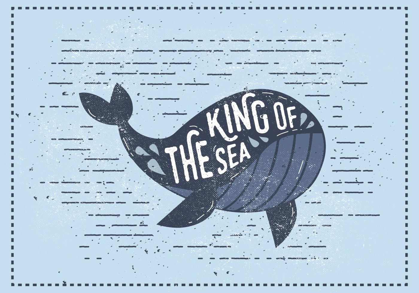 Whale illustration vintage