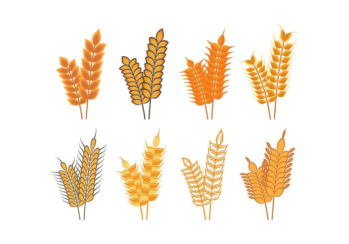 Harvest Oat Icons