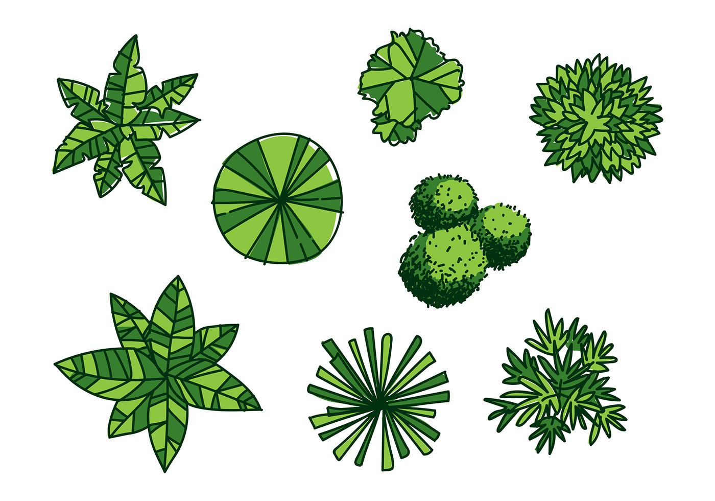 Tree Tops Vector - Download Free Vectors, Clipart Graphics ...