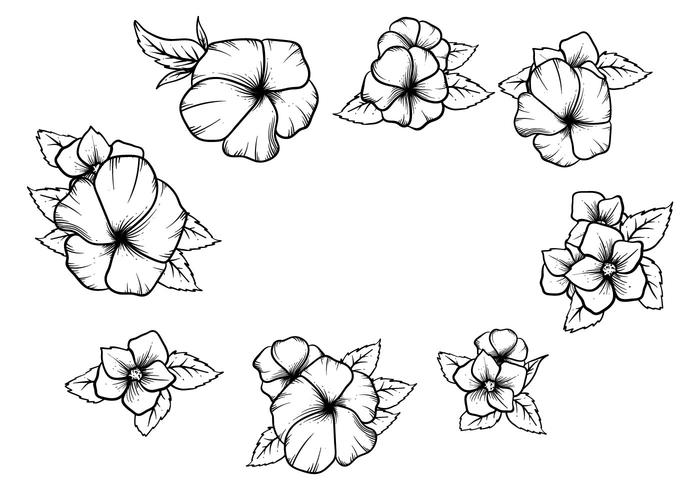 Free Hand Drawn Pansy Vector
