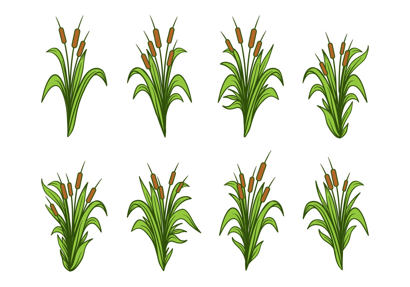 Free Cattail Cliparts, Download Free Clip Art, Free Clip Art on Clipart  Library