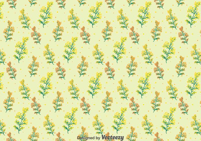 Mimosa Flowers Seamless Pattern
