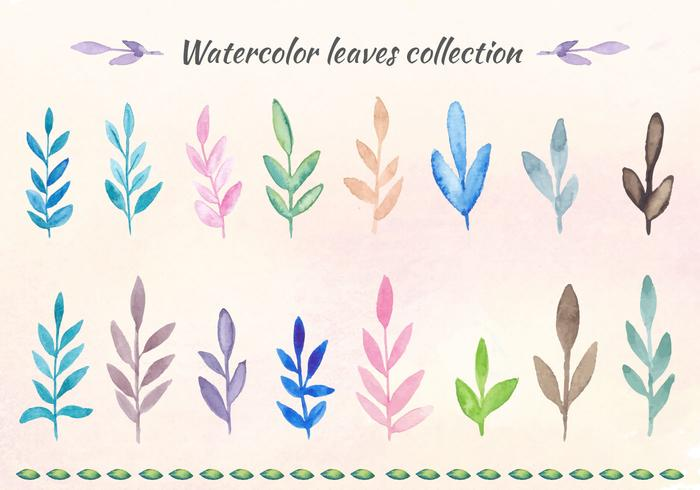Free Vector Watercolor Leaves Collection