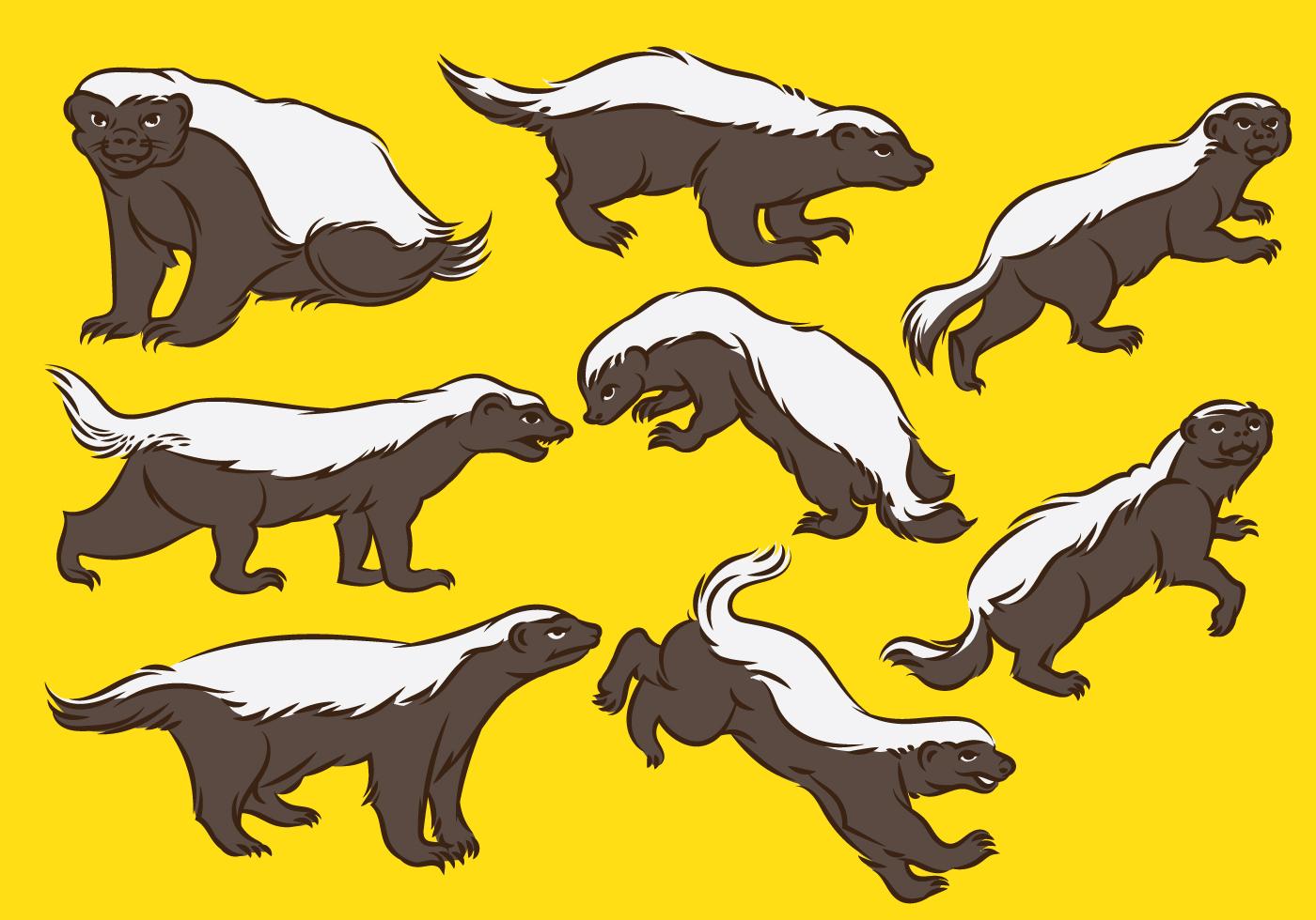 Honey Badger Cartoon - Download Free Vector Art, Stock ...  Honey Badger Ca...