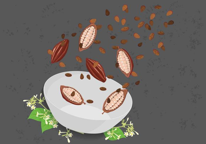 Cocoa Beans Illustration vector