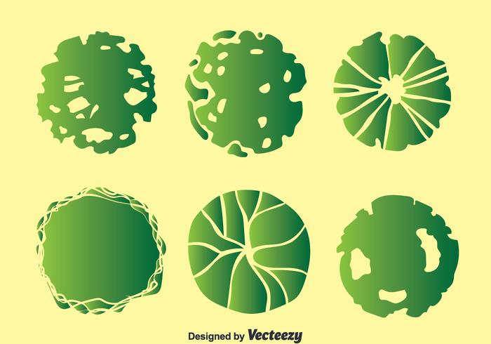 Plant On Pot Top View Collection Vector