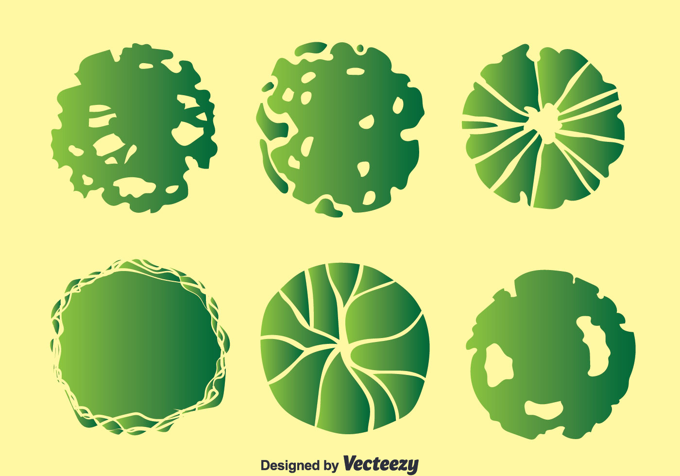 Plant On Pot Top View Collection Vector - Download Free Vector Art ... for Plant Top View Vector  183qdu