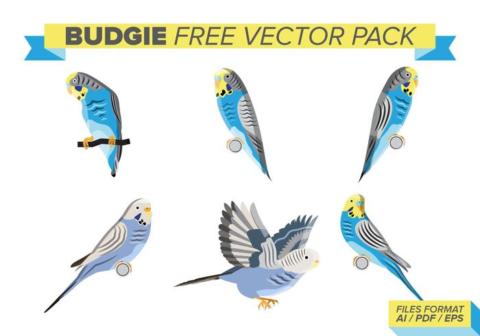 Budgie Free Vector Pack