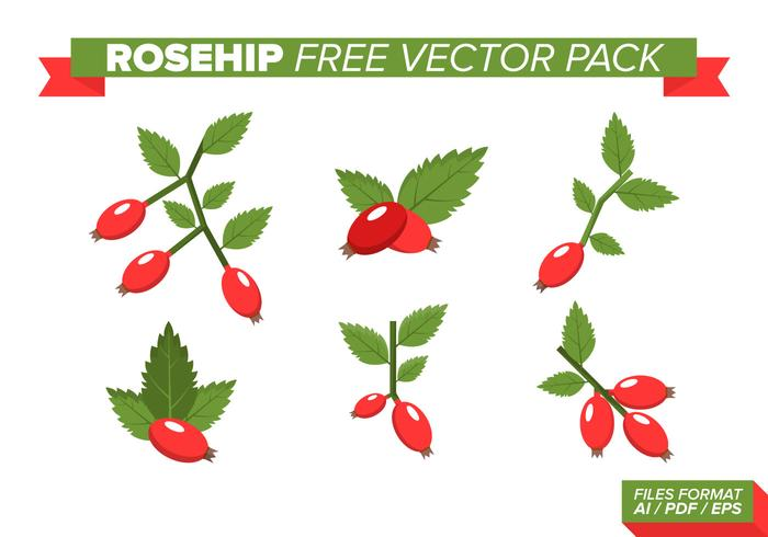 Rosehip Free Vector Pack