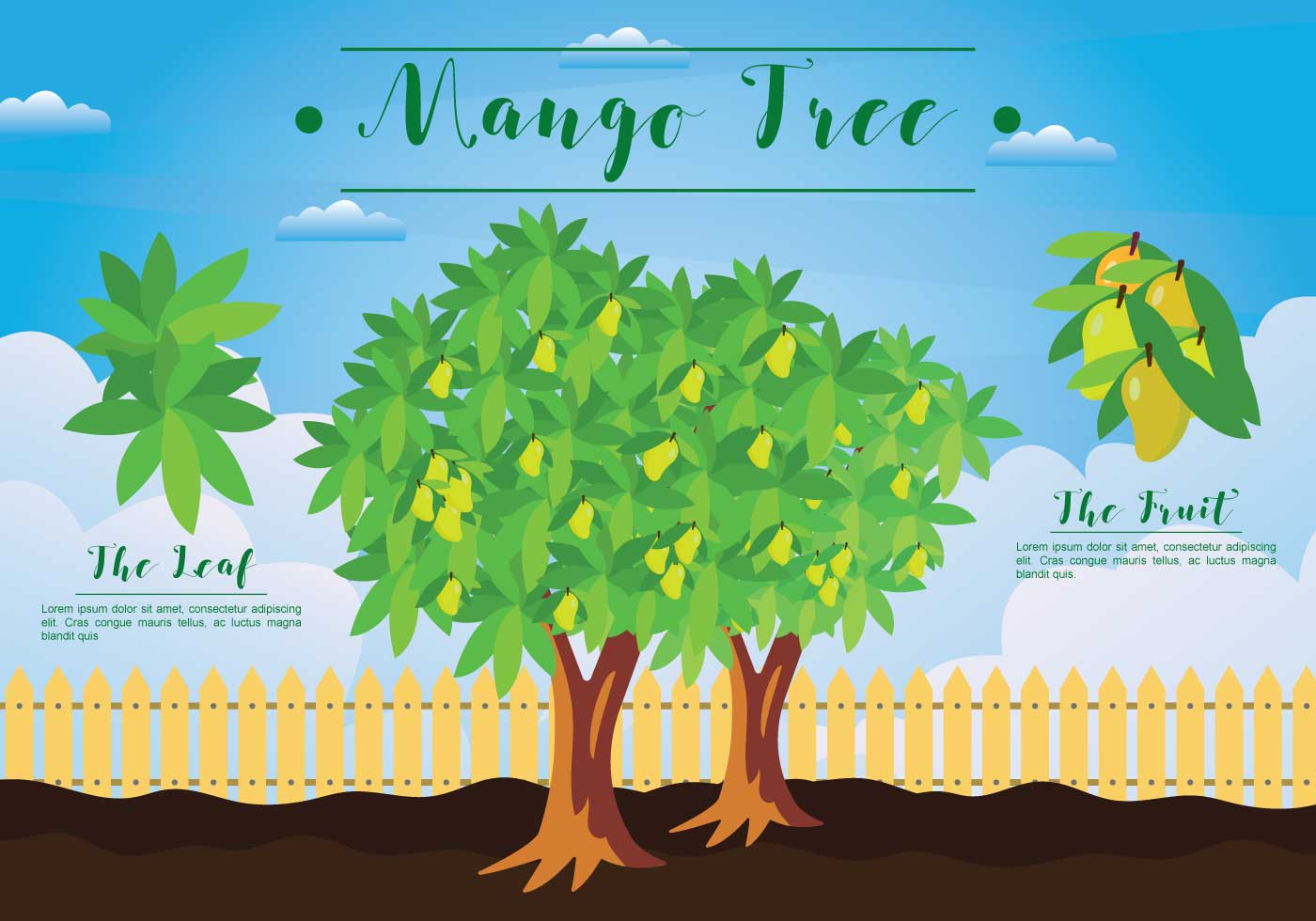 Free Mango Tree Illustration Download Free Vector Art