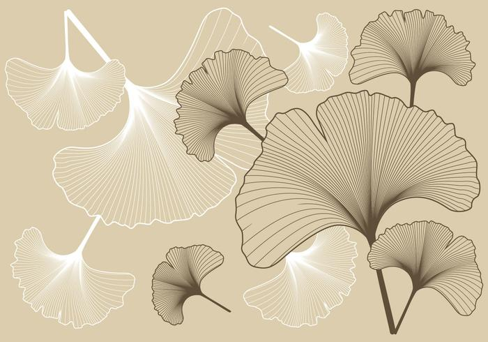 Ginko Pattern Background