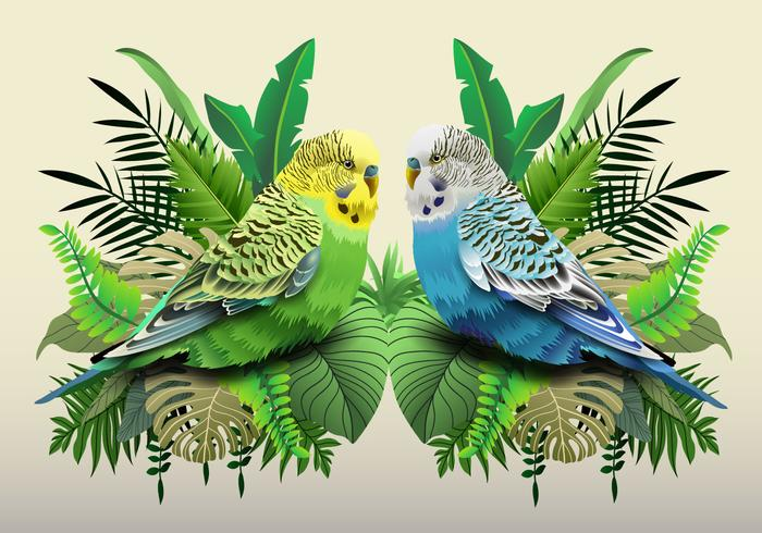 Green And Blue Budgie In Leaves