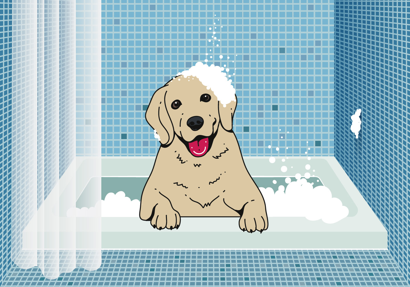Cute Dog Wash Background Download Free Vectors Clipart