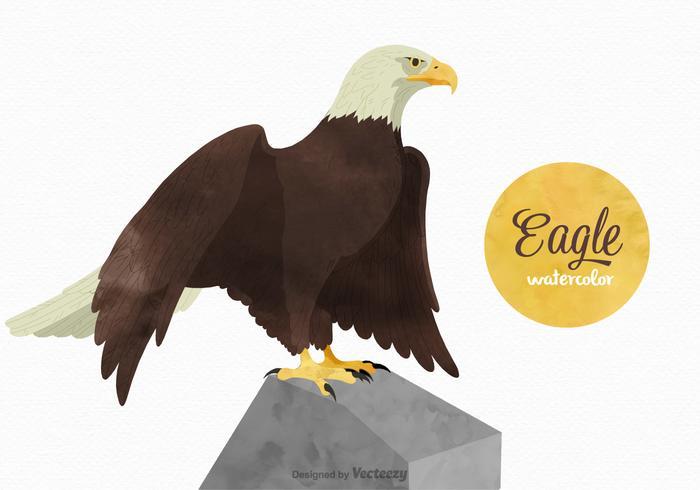 Acuarela libre Eagle Vector