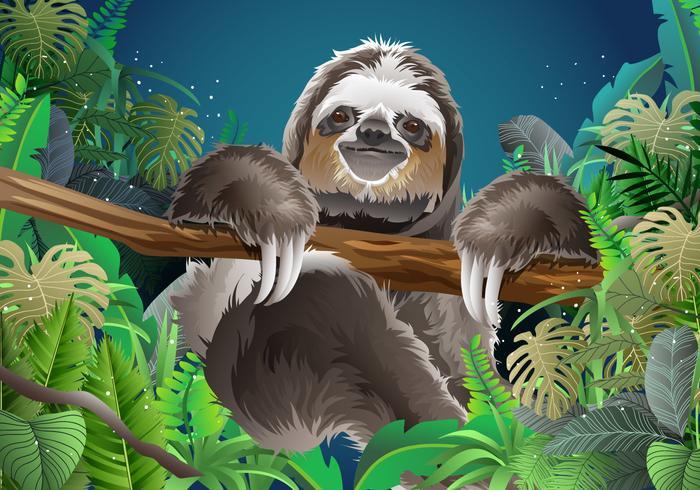 Relaxing Sloth Vector