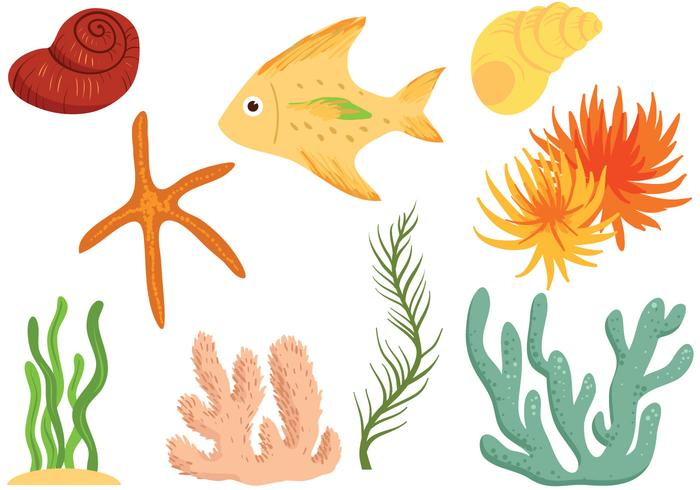 Free Seabed Vectors