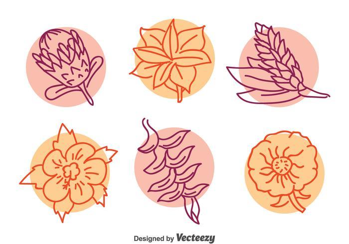 Exotic Flower LIne Vector Set