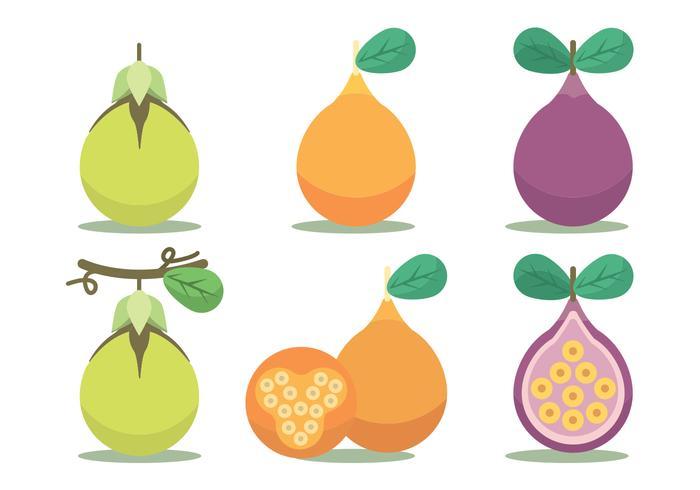 Passion Fruit Vector Set
