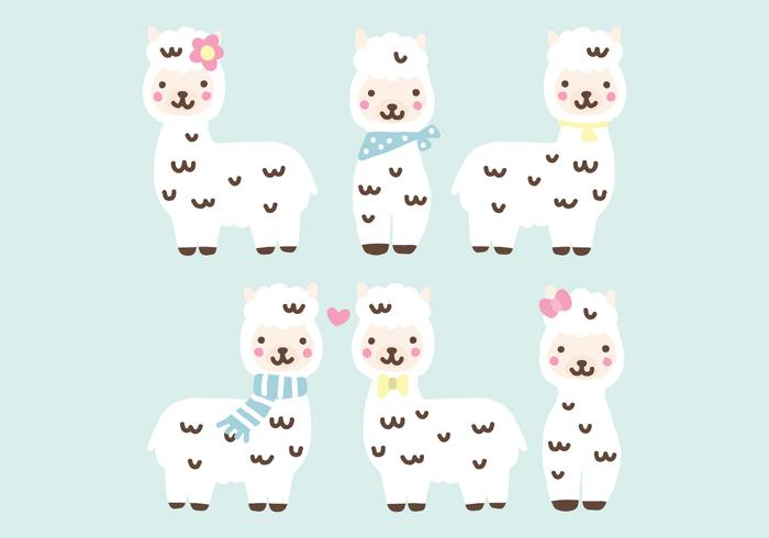 Super Cute Alpacas