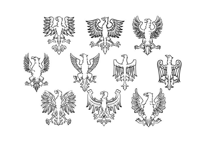 Vecteur d'aigle polonais gratuit