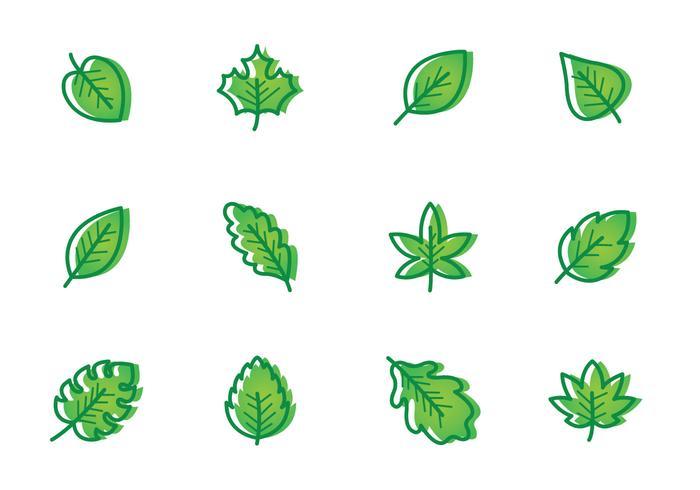 Vecteur de feuilles vert clair