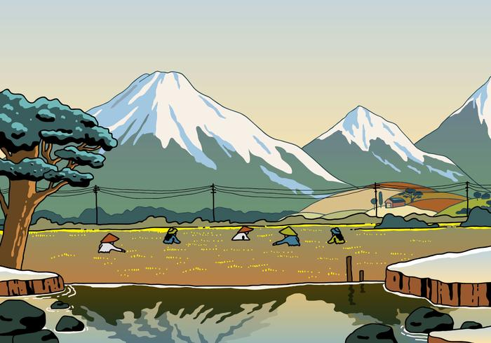 Beautiful Rice Field Landscape