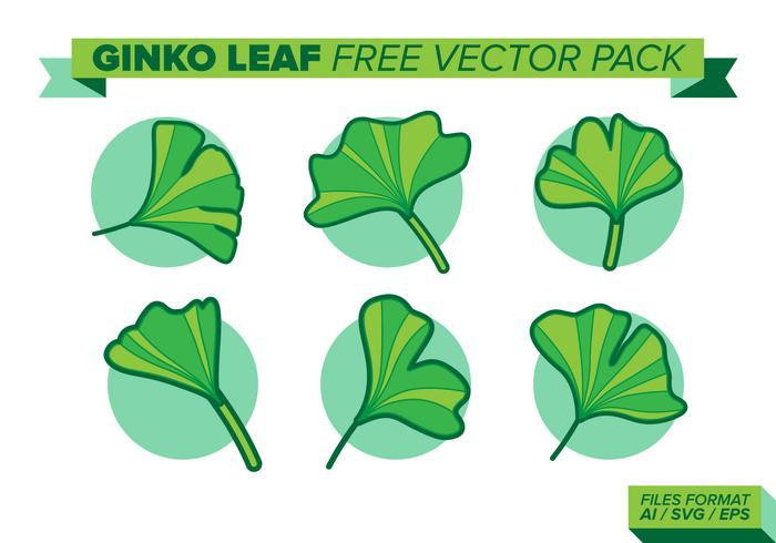 pacchetto di ginko foglia vettoriali gratis