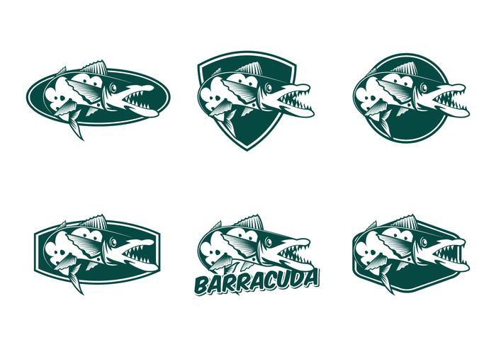 Gratis Barracuda Vector