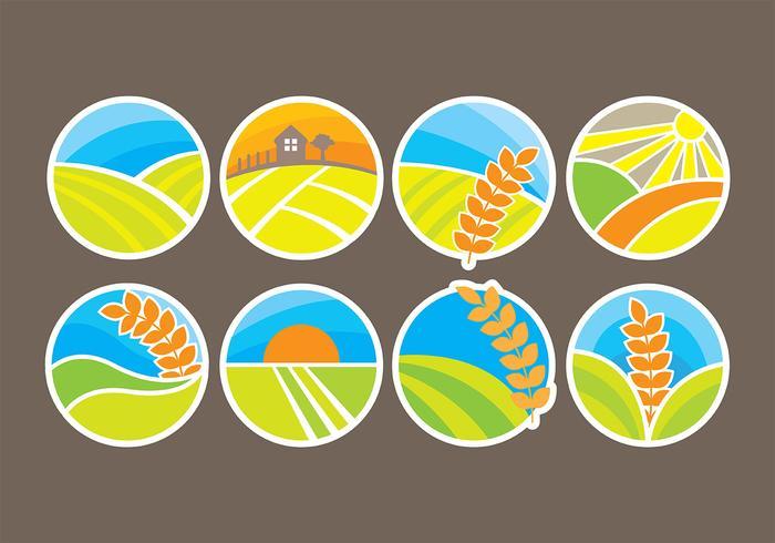 Rice Icons Vectors