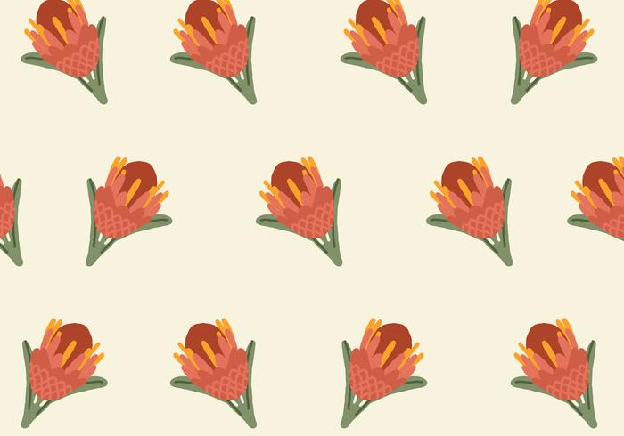 Colorful Protea Pattern