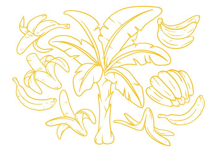Gratis Banan Illustration Vektor