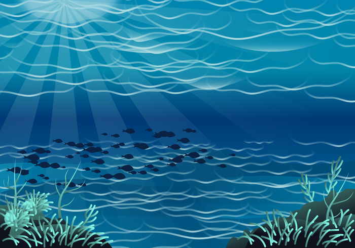 Vector Free Seabed