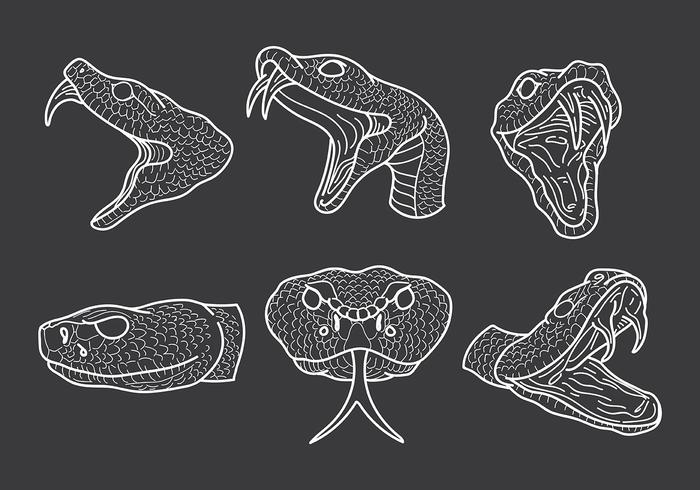 Free Rattlesnake Icons Vector