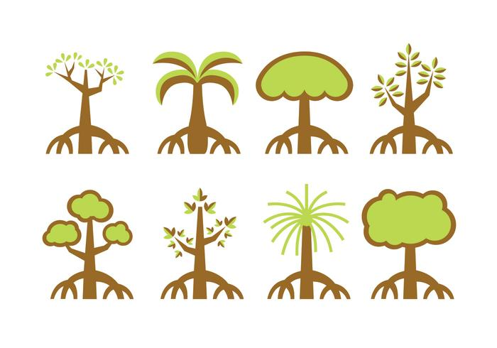 Mangrove trees vector